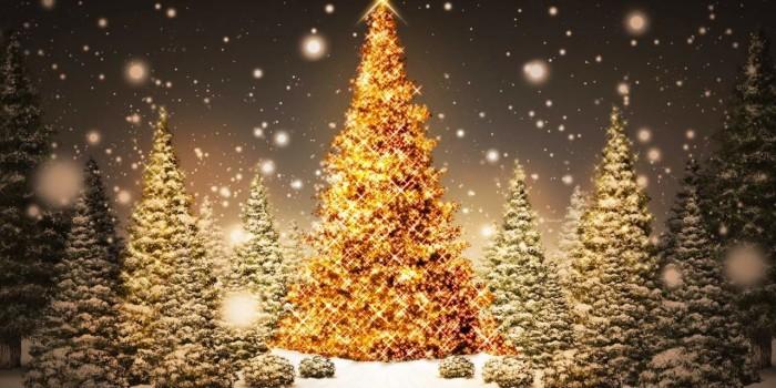 Orari Festività 2015 Aziendali e giornate di chiusura